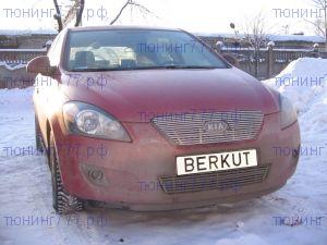 Решетка радиатора, Berkut, нерж. сталь, а/м 2007-2009