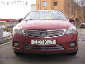 Решетка радиатора, Berkut, нерж. сталь, а/м 2010-2012